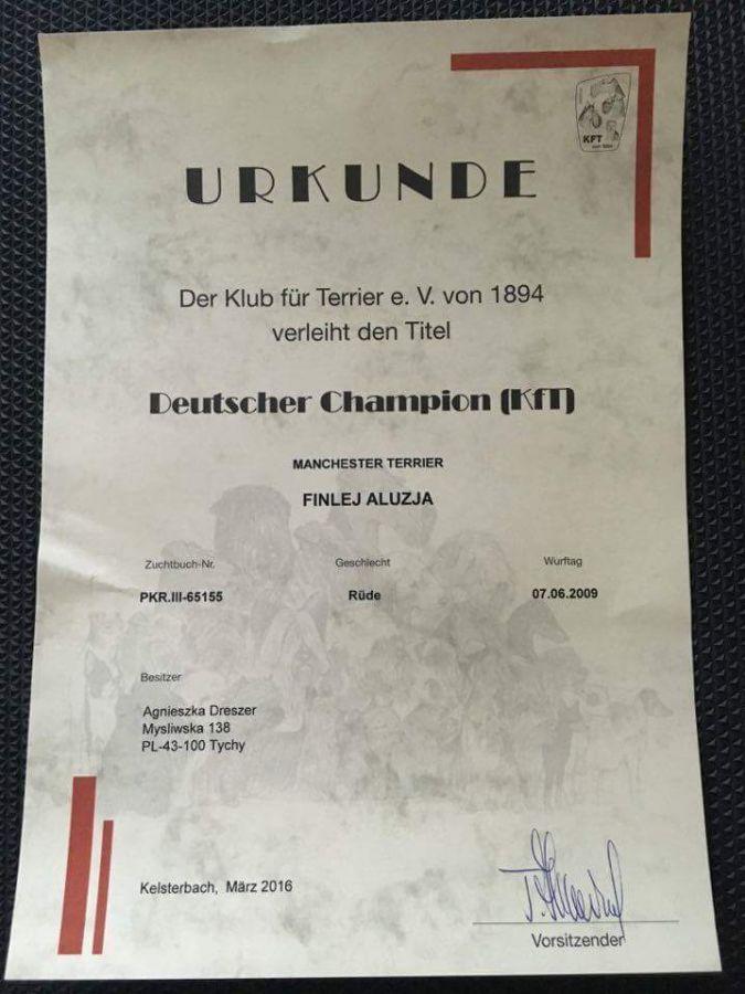 Finlej jest już championem klubu Niemiec - KfT