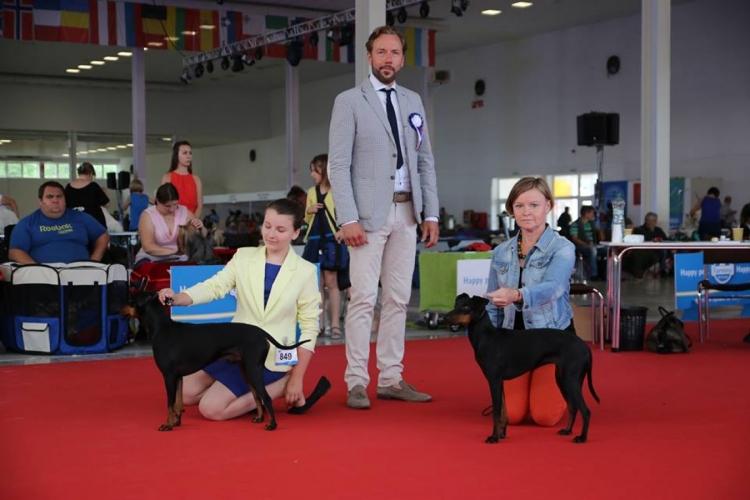 DOG EXPO - CAC NITRA 2016 (SK)