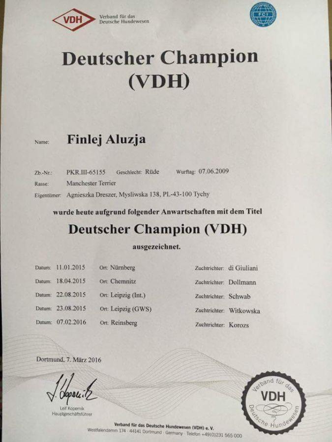 Finlej jest już oficjalnie championem Niemiec VDH