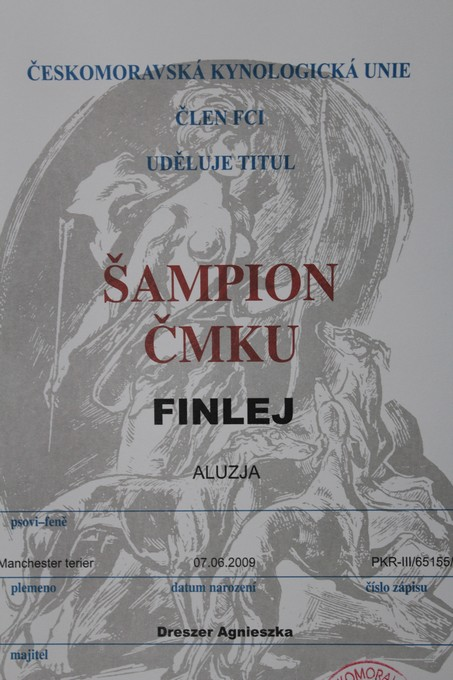FINLEJ Aluzja - CHAMPION CMKU