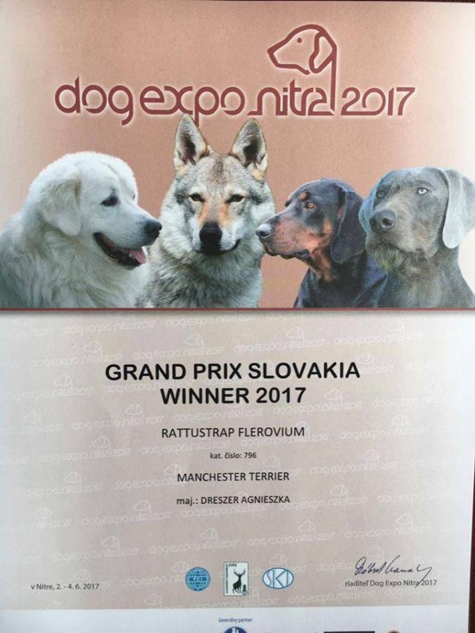 GRAND PRIX SLOVAKIA SHOW - NITRA CACIB (SK)