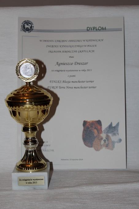 AWARD FOR SHOW SEASON 2013