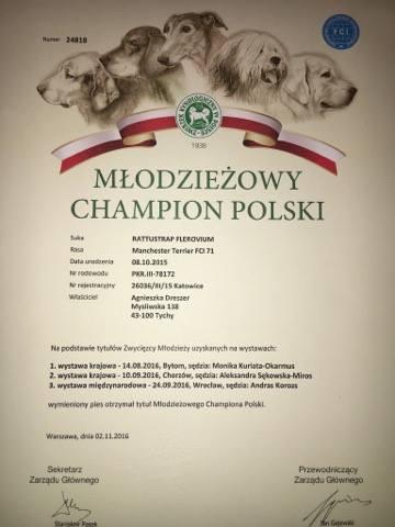 FANTA JEST JUŻ OFICJALNIE MŁODZIEŻOWYM CHAMPIONEM POLSKI - MAMY POTWIERDZENIE!