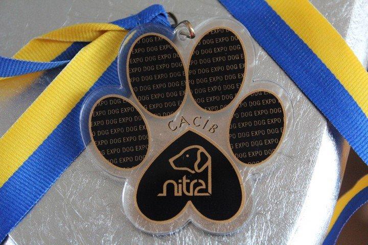 PRESIDENT CUP SHOW - NITRA CACIB (SK)